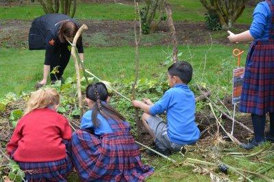 Māra Kai – A Traditional Maori Garden