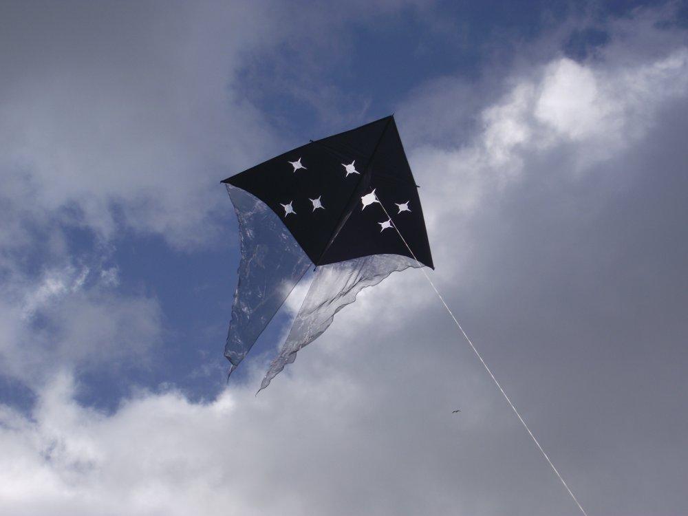 Te Iwa o Matariki Whānau Day