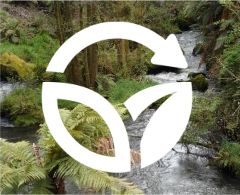 Working Together On A More Sustainable Rotorua